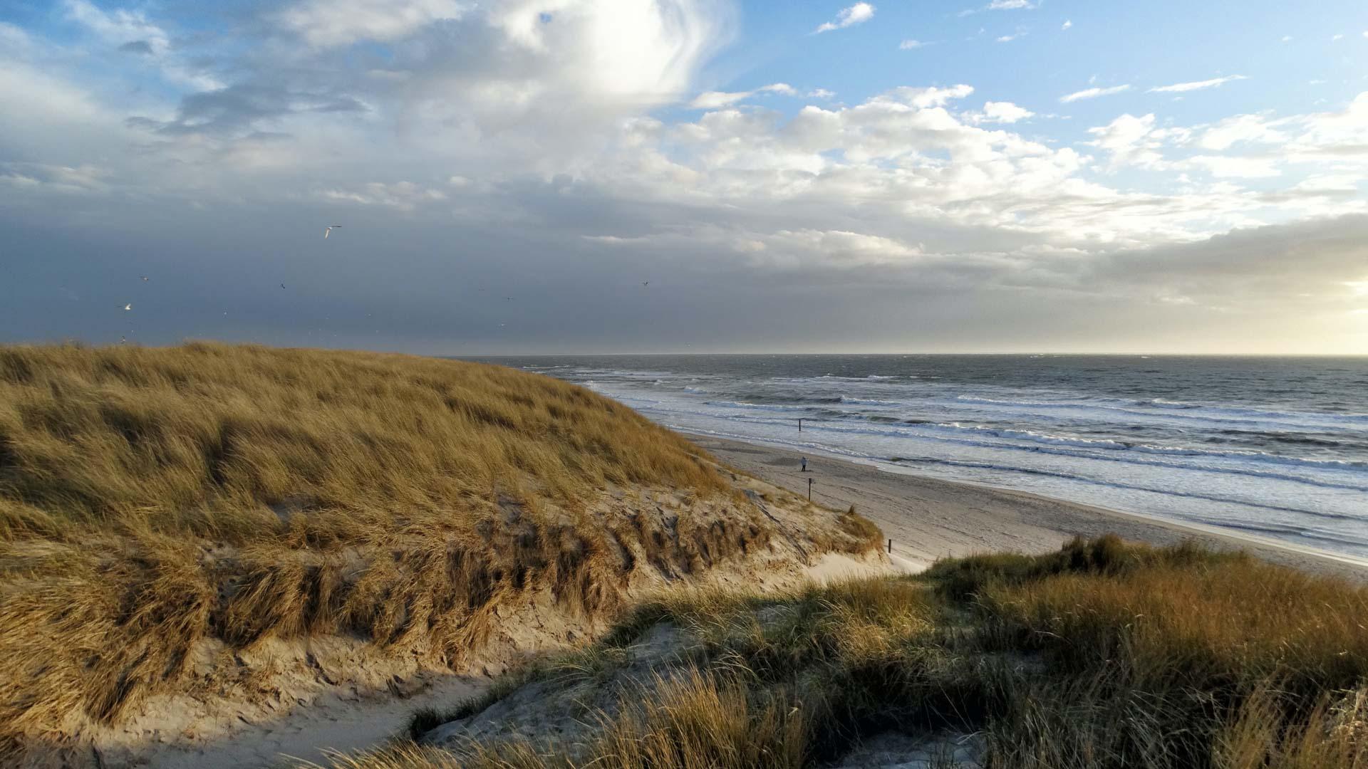 Holländische Strandlandschaft