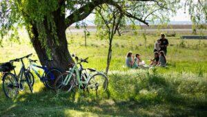 eine Gruppe sitzt im Grad, Fahrrad lehnt a, Baum