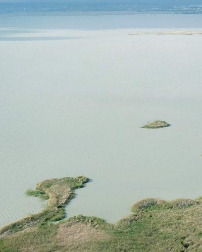 Luftaufnahme vom Neusiedlersee mit Schilfgürtel